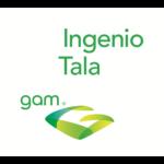 LogotipoIngenioTala554
